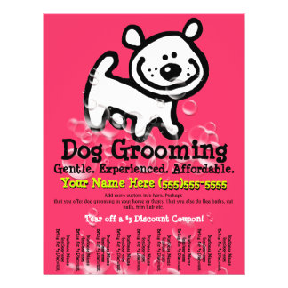 Dog Grooming.Advertising Pet Service. 21.5 Cm X 28 Cm Flyer