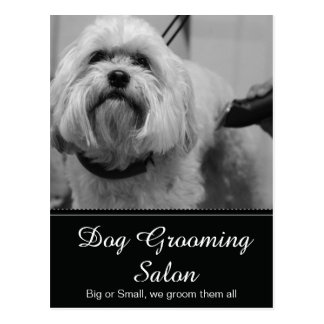 Dog Grooming Post Card - Personalizable