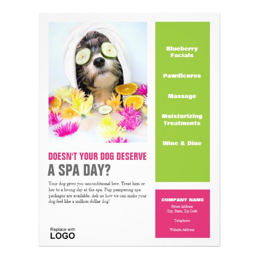Dog Grooming Spa Poster Flyer
