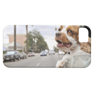 Dog hanging head out of car window iPhone 5 cases