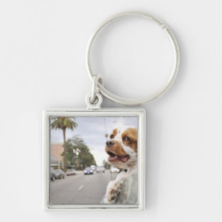 Dog hanging head out of car window Silver-Colored square key ring