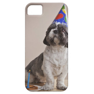 Dog having birthday iPhone 5 covers