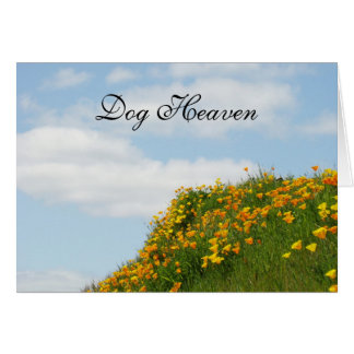 Dog Heaven Sympathy Cards Sorry for your Loss!