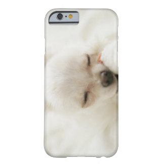 Dog holding toy in mouth barely there iPhone 6 case