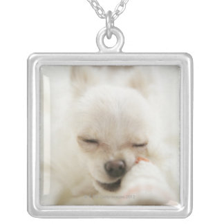 Dog holding toy in mouth silver plated necklace