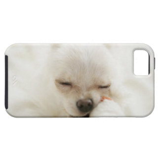 Dog holding toy in mouth tough iPhone 5 case