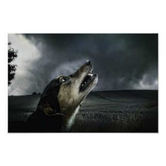 Dog howling at storm poster