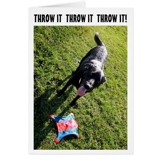 Dog humor birthday card