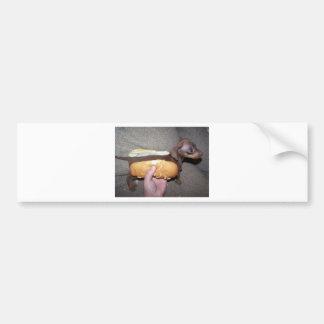 Dog in a Bun Bumper Sticker