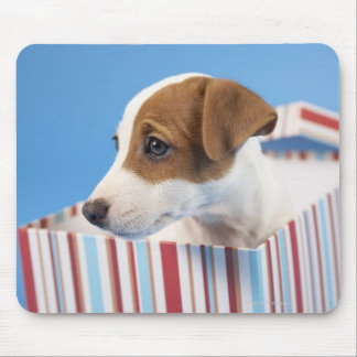 Dog in a Gift Box Mouse Mat