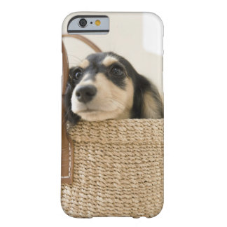 Dog in basket barely there iPhone 6 case