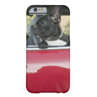 Dog in car barely there iPhone 6 case