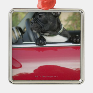Dog in car christmas ornament