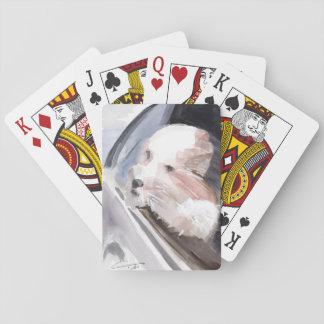 dog-in-car playing cards