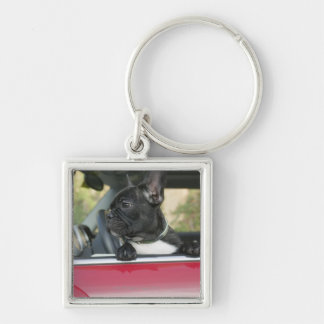 Dog in car Silver-Colored square key ring