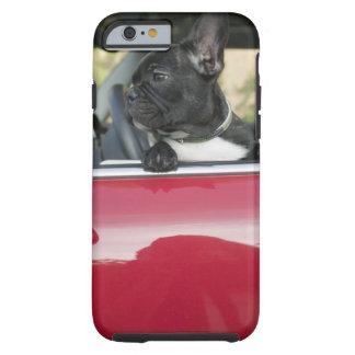Dog in car tough iPhone 6 case