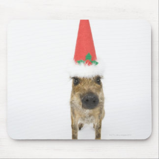 Dog in Christmas hat Mouse Pad