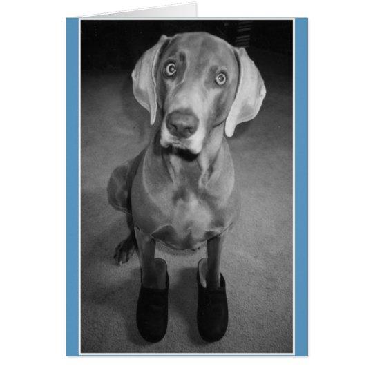 """""""Dog in Clogs"""" - funny blank b&w art"""