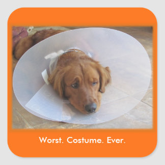 Dog in Cone Halloween Sticker