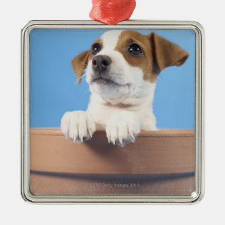 Dog in flowerpot christmas ornament