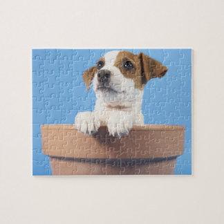 Dog in flowerpot jigsaw puzzle