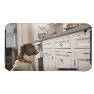 Dog in kitchen looking at food on counter Case-Mate iPod touch case