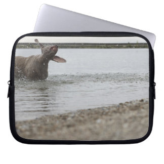 Dog in Lake Shaking Off Water Laptop Sleeve