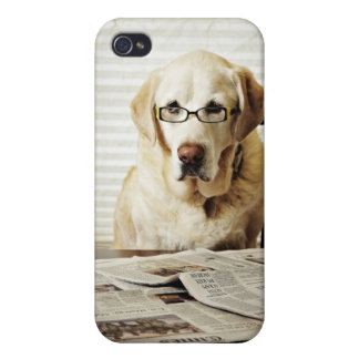 Dog in morning routine iPhone 4 cases