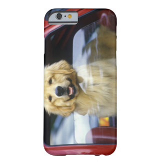 Dog in red car window barely there iPhone 6 case