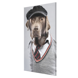 Dog in sweater and cap canvas print