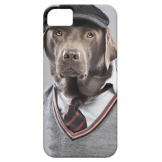 Dog in sweater and cap case for the iPhone 5