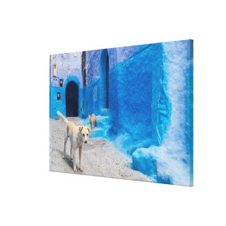Dog in the Blue City Canvas Print