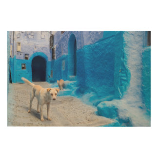 Dog in the Blue City Wood Prints