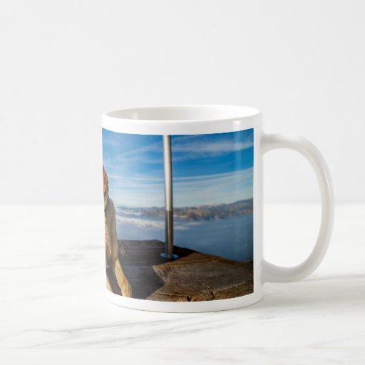 Dog in the Nature Mugs