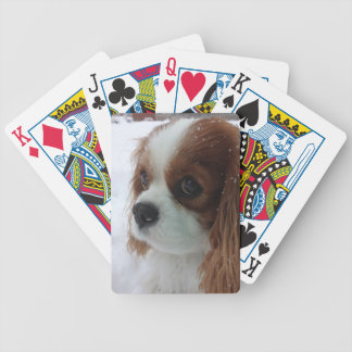 Dog in the Snow Bicycle Playing Cards