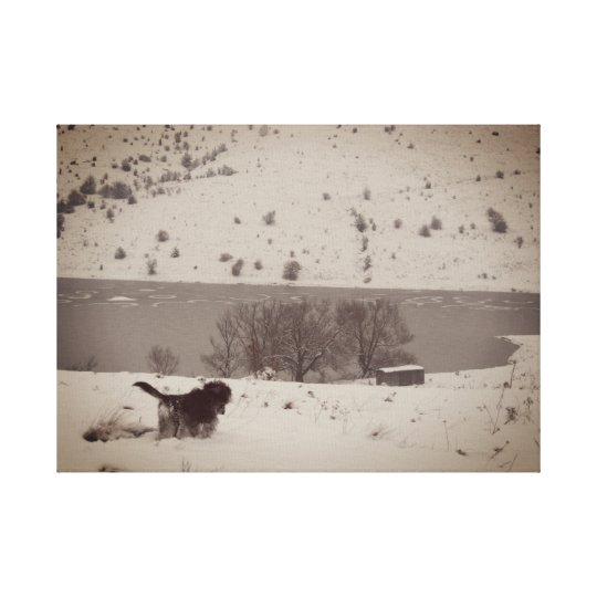 Dog in the Snow Canvas Print