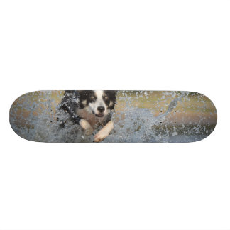 Dog in the Water 20.6 Cm Skateboard Deck