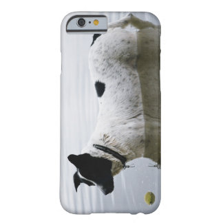 Dog in Water with Tennis Ball Barely There iPhone 6 Case