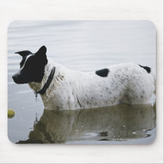 Dog in Water with Tennis Ball Mouse Pad