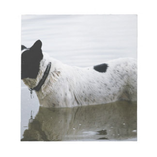 Dog in Water with Tennis Ball Notepad