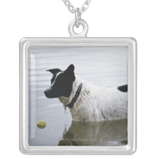 Dog in Water with Tennis Ball Silver Plated Necklace