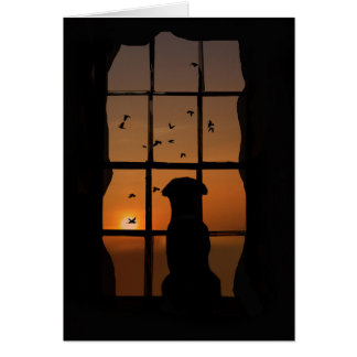 Dog in Window Sympathy, Condolences Card