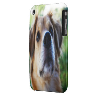 Dog iPhone 3 cover (HD)