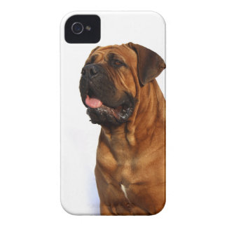 Dog iPhone 4 Cases