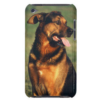 dog iPod touch covers