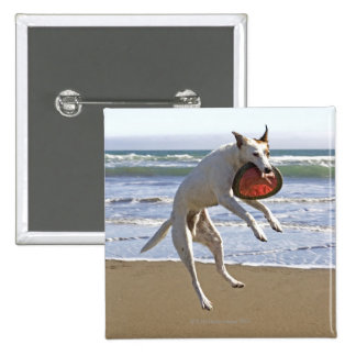 Dog jumping to catch a frisbee on beach 15 cm square badge