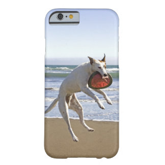 Dog jumping to catch a frisbee on beach barely there iPhone 6 case