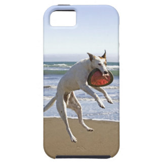Dog jumping to catch a frisbee on beach case for the iPhone 5