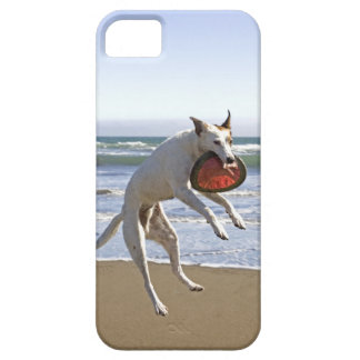 Dog jumping to catch a frisbee on beach iPhone 5 case