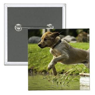 Dog jumps into pond 15 cm square badge